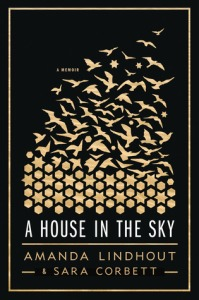 house-in-the-sky